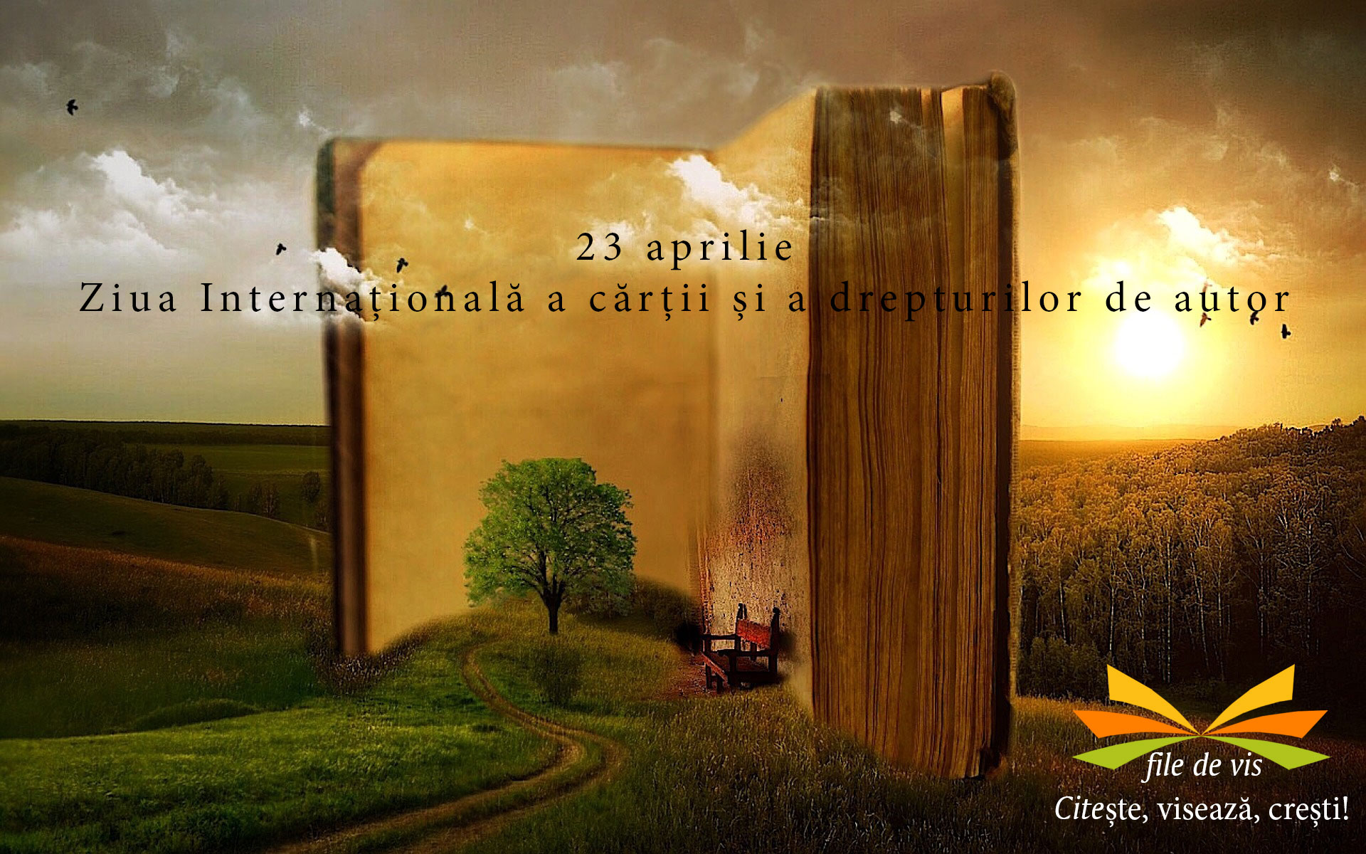 ziua internationala a cartii fb cover
